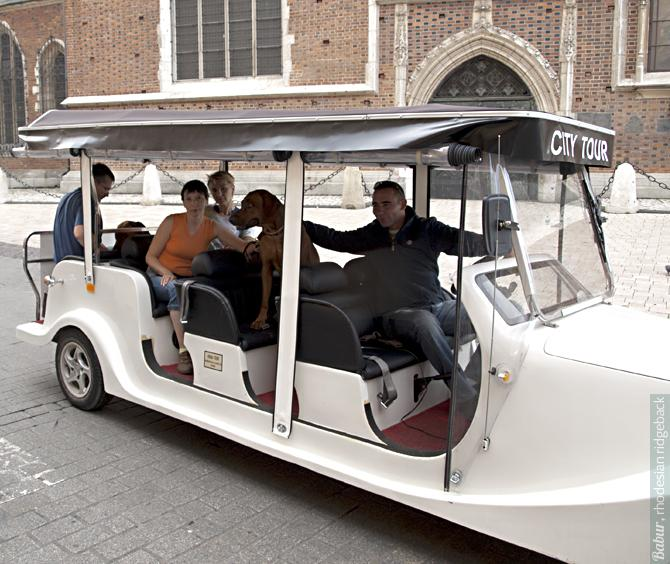 Главные туристы Видж и Бабур