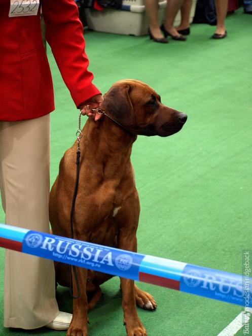 Россия-2008. Karoskloof Kordaat Kaptein