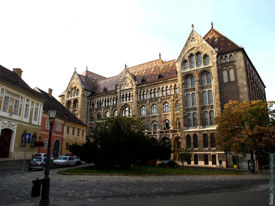 Бабур в Будапеште